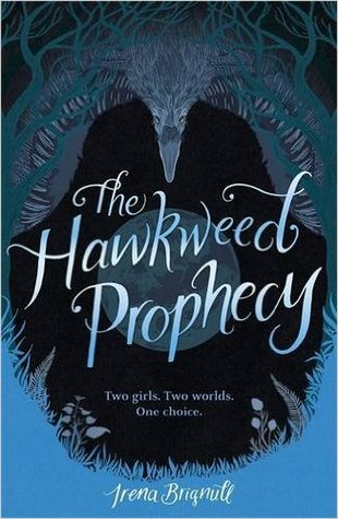 hawkweed prophecy