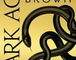 Review: Dark Age by Pierce Brown