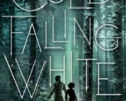 Review: Cold Falling White by G.S. Prendergast