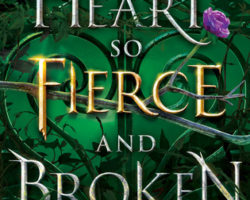 Review: A Heart So Fierce and Broken by Brigid Kemmerer